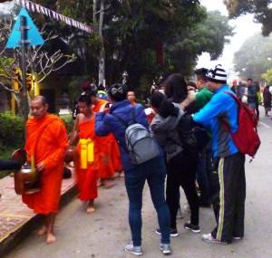 Touristenspektakel statt stiller Zeremonie - die morgendliche Mönchsspeisung