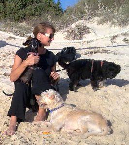 Nach dem Bad im Meer ist ein leichter Körpergeruch beim trocknenden Hund normal