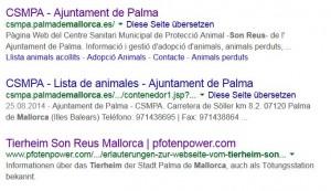 Suchergebnis bei der Eingabe von Son Reus Tierheim Mallorca