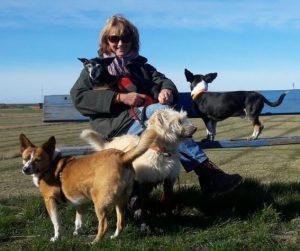 Vier Hunde und Tierheilpraktikerin Annette Dragun auf dem Nordseedeich