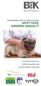 Flyer gegen Qualzucht von der Bundestierärztekammer